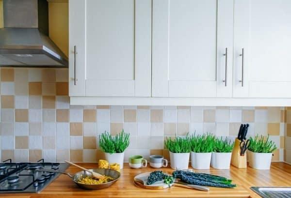 Cocina saludable: información, productos, recetas