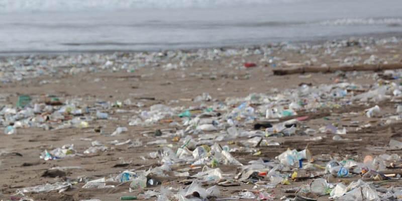 vivir sin plásticos: como afecta los océanos