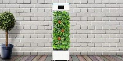 Los mejores purificadores de aire Calidad Precio de 2020 [Comparativa]